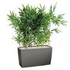 Bambou semi naturel pour bureau bac anthracite