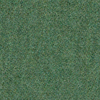 _0007_TSG_WOOL-Seagrass