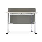 standing_desk_160_80_electrique