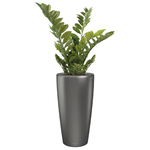 plantes de bureau en pot anthracite semi naturelle