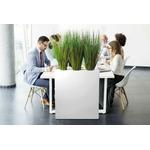 séparateur végétal pour bureau et open space