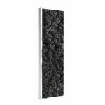 tableau-végétal-en-lichen-noir2