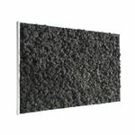 Tableau végétal en lichen noir