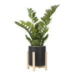 (Lofthome-Cylindre-[Anthracite])-(Zamia)