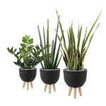 Set de 3 plantes artificielles et pot design noir