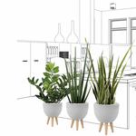 Set de 3 plantes artificielles et pot design ciment