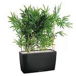 Bambou semi naturel pour bureau bac noir