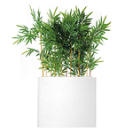 séparateur blanc de bambou semi-naturel
