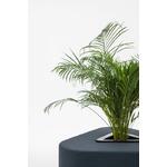pouf triangle avec plante centrale