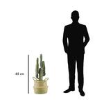 cactus-artificiel-pot-osier-85cm