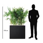 Bambou semi-naturel 170 cm pour open-space