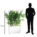 Séparateur open-space 145 cm en bambou semi-naturel