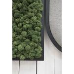 panneau acoustique végétal buzzimood