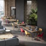 chaise-coloré-et-design-en-bois-gamme-code