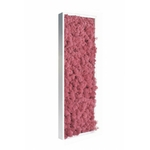 Tableau de lichen stabilisé rose