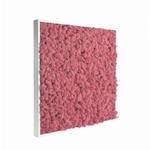tableau-de-lichen-stabilise-rose-60