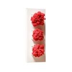 Plantes murales Lichen rouge