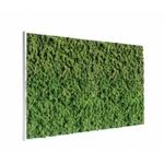tableau-de-lichen-stabilise-vert-nature-maxi