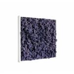 tableau-de-lichen-stabilise-violet-40