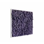 tableau-de-lichen-stabilise-violet-60