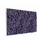 tableau-de-lichen-violet-stabilise-maxi