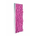 Tableau de lichen stabilisé rose électrique