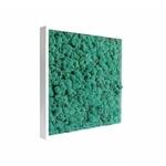 tableau-de-lichen-stabilise-pacific-40