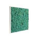 tableau-de-lichen-stabilise-pacific-60
