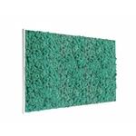 tableau-de-lichen-stabilise-pacific-maxi