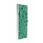 Tableau végétal en lichen turquoise