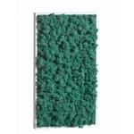 tableau-de-lichen-stabilise-pacific-rectangle