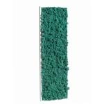 tableau-de-lichen-stabilise-pacific-demi-maxi