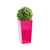 vegetal_sans_entretien_accueil_bureau