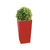 vegetal_sans_entretien_entree_bureau
