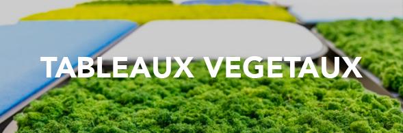 tableaux-vegetaux