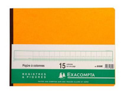 REGISTRE COMPTABLE 15 COLONNES SUR 1 PAGE 28x38cm