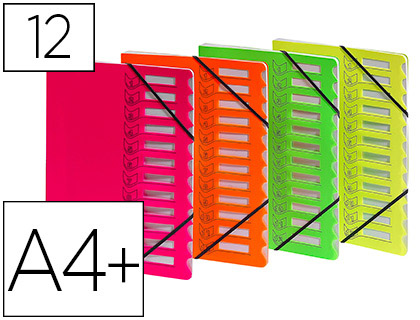 FLUO 12 COMPARTIMENTS ASSORTIS