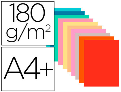 CHEMISES FOREVER 180G ASSORTIS X50