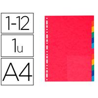 EXACOMPTA CARTE A4+ 12 TOUCHES
