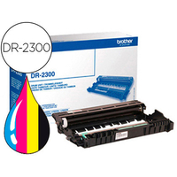 BROTHER TAMBOUR DR2300