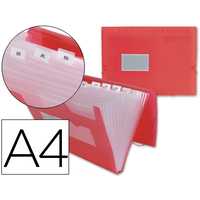 TRIEUR POLYPRO 13 COMPARTIMENTS ROUGE
