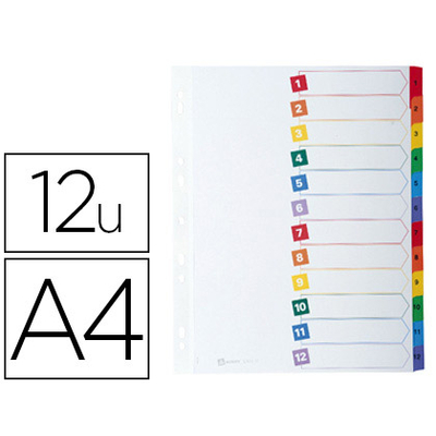 MYLAR A4 12 TOUCHES MENSUEL