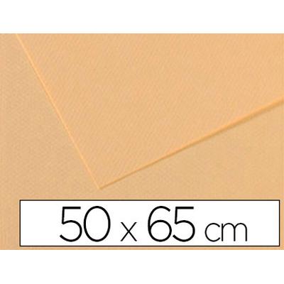 MI-TEINTES 50X65CM 160G LICHEN N°407
