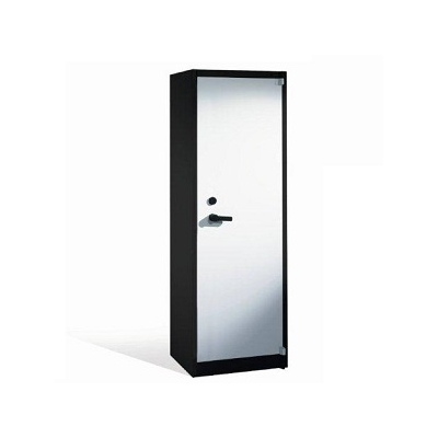 Armoire anti feu - 1 porte battante - H1950xL650xP500 mm - RAL 7021 - Gris anthracite