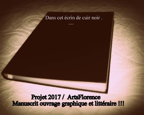 manuscrit artsflorence ouvrage graphique et littéraire