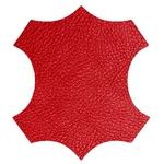 logo cuir rouge
