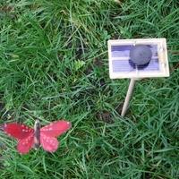 Kit PAPILLON solaire rouge 7cm