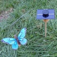 Kit Papillon Solaire Bleu 8cm grande cellule