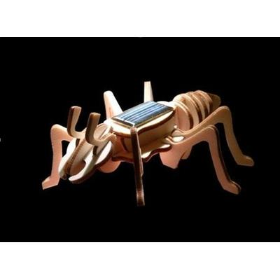 157-maquette-bois-fourmi-solaire