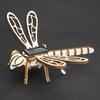 501-maquette-libellule-en-bois